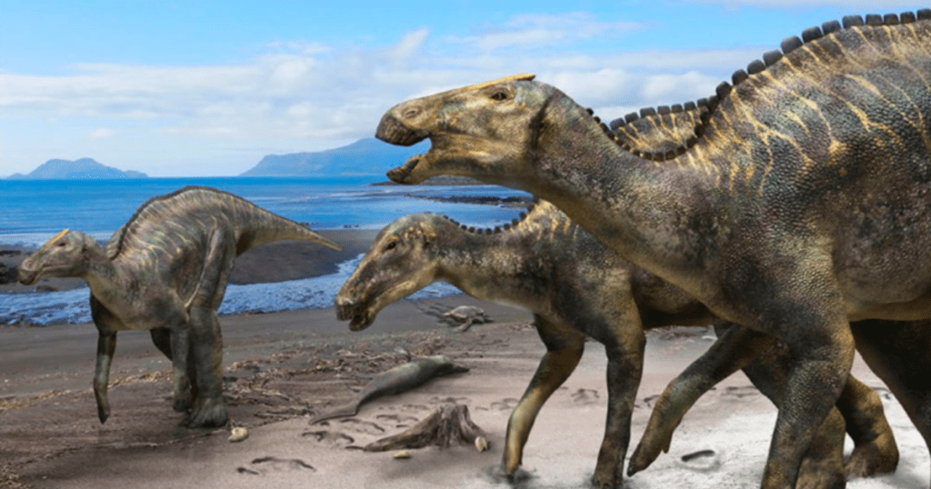 A New Dinosaur Species Has Been Discovered Showing Evolution From Two Legged to Four Legged