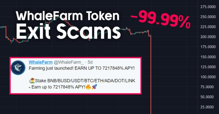 """Million Dollar """"Rug Pulling"""" Event Drops Altcoin Price 99 Percent!"""