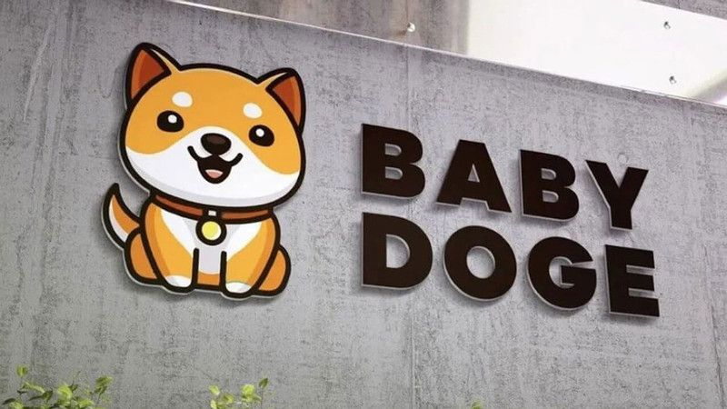 Elon Musks New Dogecoin What is Baby Doge Coin and where to buy it 1