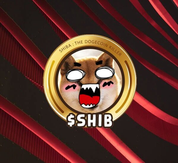 How Does the Shiba Inu Coin Work?