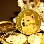 Shiba or Safemoon Which Is More Effective?